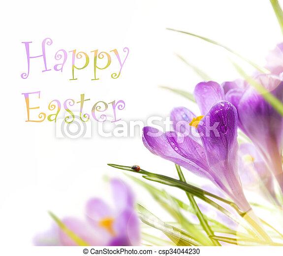 イースター, 花, 芸術, 背景, 春 - csp34044230