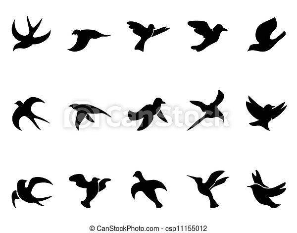 シルエット, 単純である, 飛行, 鳥 - csp11155012