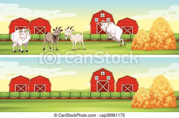 ヤギ, 農場, 納屋, 現場 - csp38961175