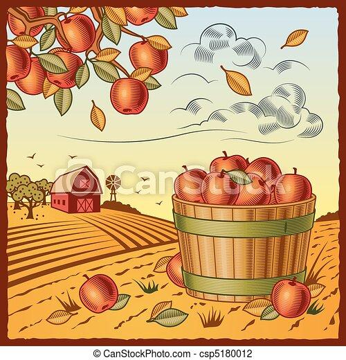 収穫, アップル, 風景 - csp5180012