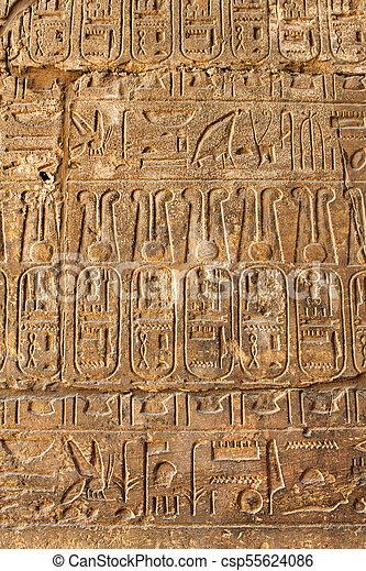 古代, 象形文字, 背景, 手ざわり, エジプト人 - csp55624086