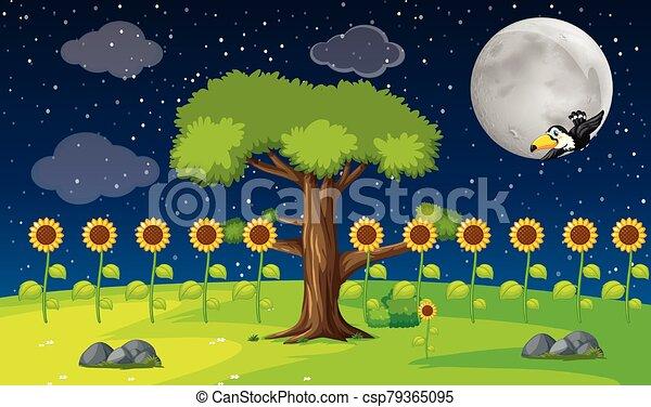 夜, 光景, 庭, 抽象的 - csp79365095
