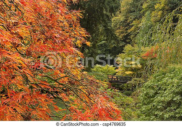 季節, 秋, 日本の庭 - csp4769635