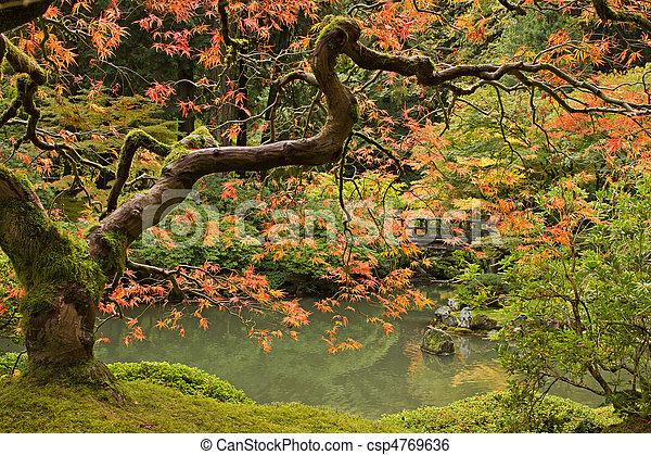 季節, 秋, 2, 庭の日本人 - csp4769636
