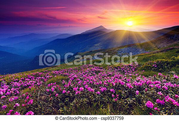 山の景色 - csp9337759