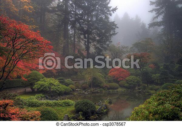 庭の日本人, 朝, 秋, 霧が濃い, 1(人・つ) - csp3078567