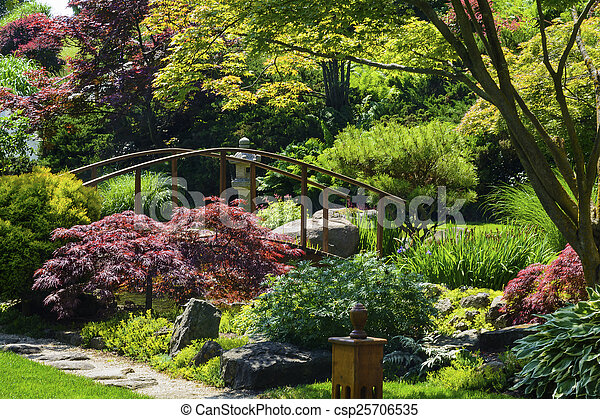 日本の庭 - csp25706535
