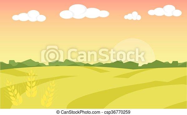 景色。, 小麦, illustration., フィールド, 農場, イラスト, バックグラウンド。, ベクトル, 風景, 日の出 - csp36770259
