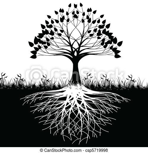 木, 定着する, シルエット - csp5719998