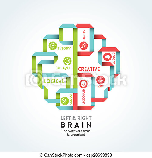 機能, 脳, 権利, イラスト, 左 - csp20633833