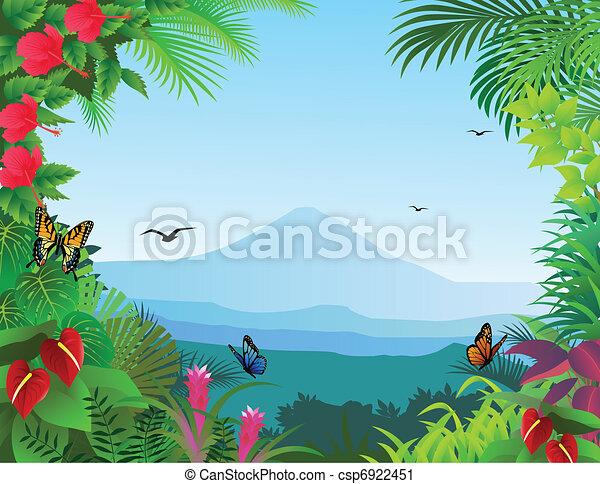 熱帯 森林, 背景 - csp6922451