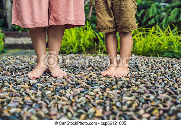 石, 歩くこと, 母, 舗装, reflexology., 玉石, 息子, reflexology, 舗装, textured, フィート, 小石 - csp66121605