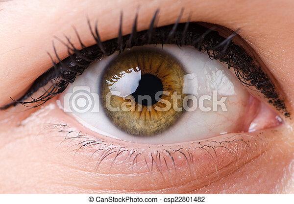 終わり, 女性の目, の上 - csp22801482