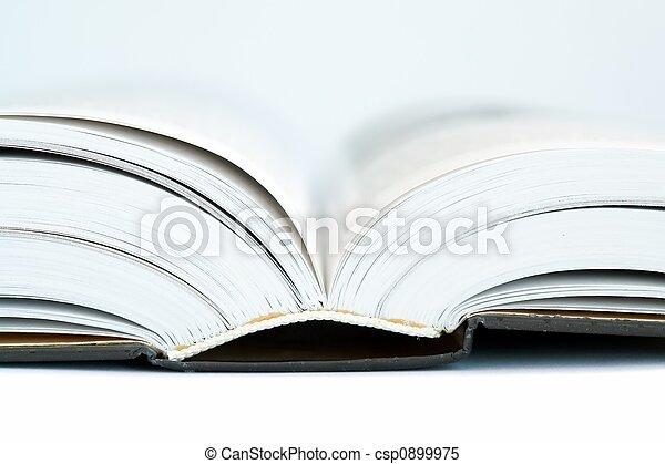 聖書, 神聖 - csp0899975