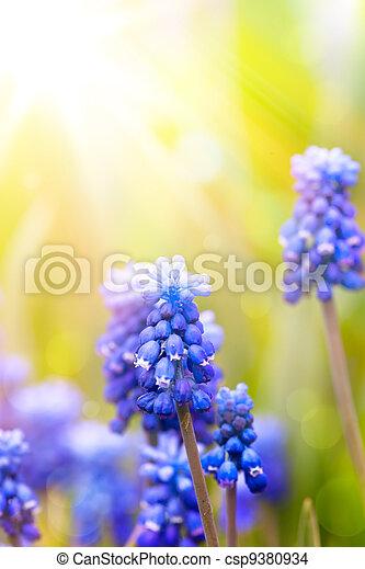 花, 芸術, 背景, 春, 美しい - csp9380934