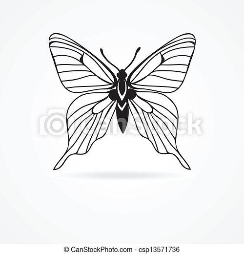 蝶, 白, 隔離された, 背景 - csp13571736