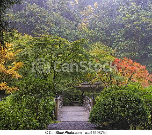 霧が濃い, 朝, 日本の庭 - csp16193754