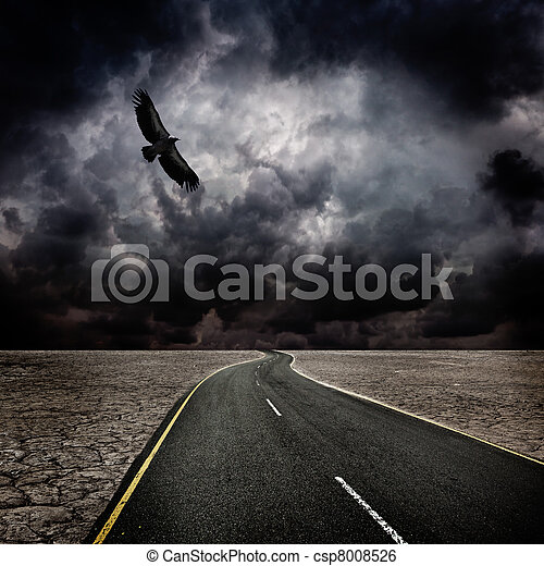 鳥, 嵐, 砂漠, 道 - csp8008526