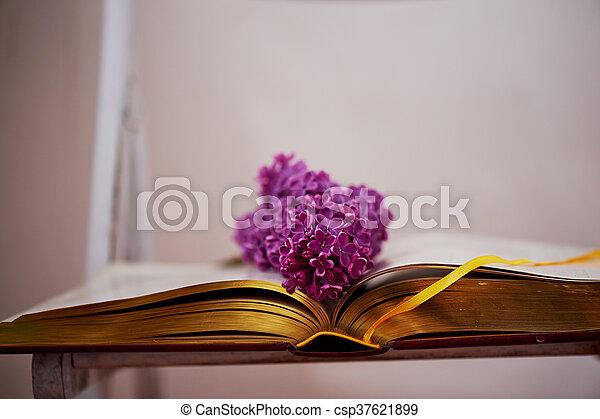 comprehensive, 本, ページ, ライラック - csp37621899